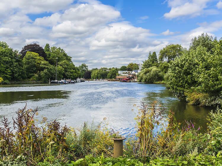 Thames Path: Richmond to Hampton Court