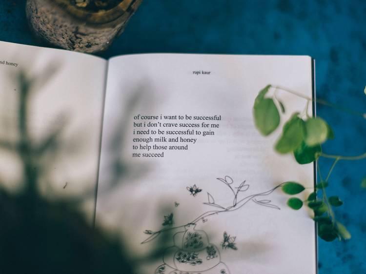 Seis ideias para comemorar o Dia Mundial da Poesia