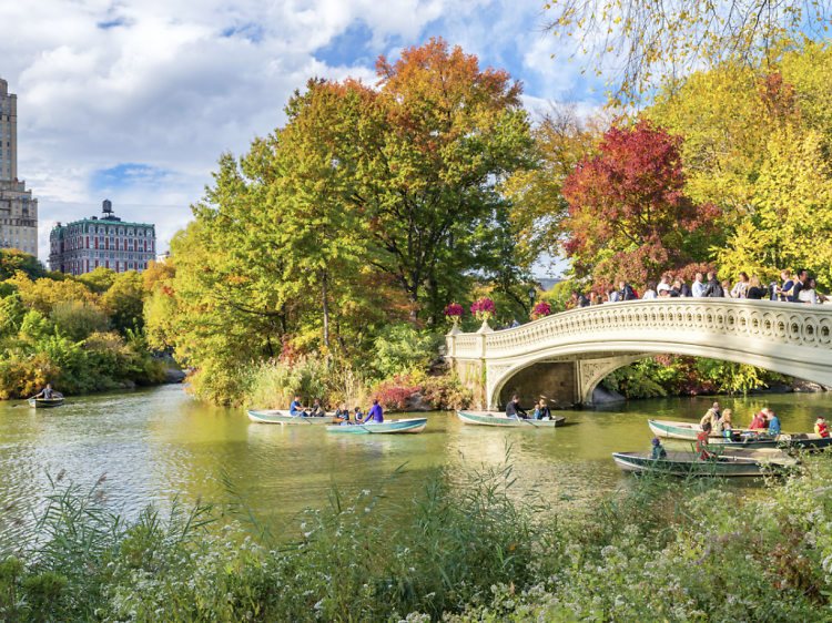 The best parks in NYC