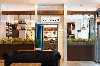 The Wilson