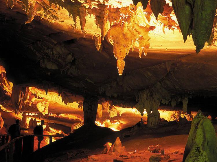 Explore spectacular caves at Gunung Mulu National Park