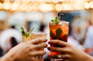 Bar Schweppes cheers (Bar Schweppes cheers)