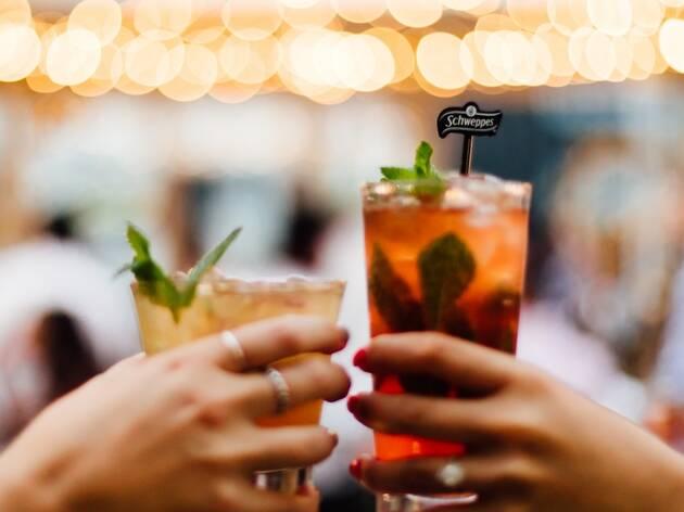 Bar Schweppes cheers 2