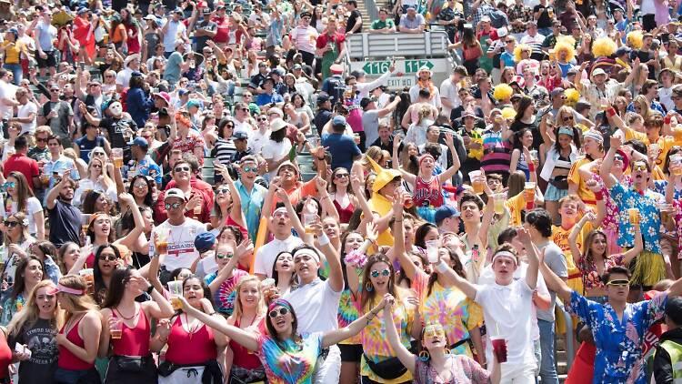 Hong Kong Sevens crowd