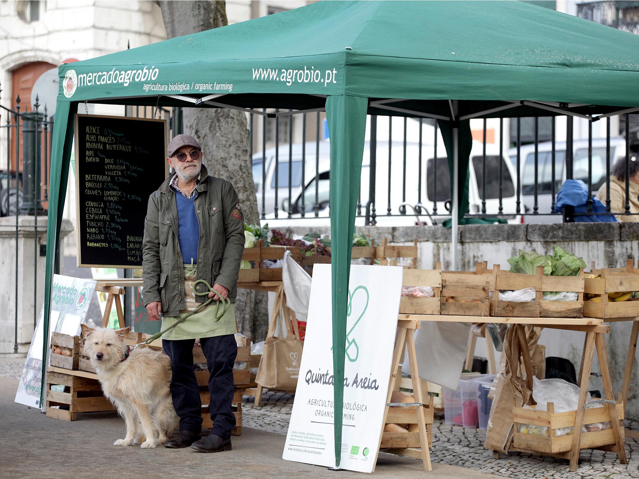 Mercado AgroBio