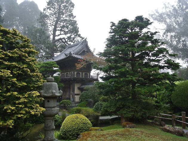 A Japanese lantern surrounded by greenery and fog
