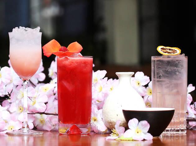 sakagura, blossom bars, sakura season in london