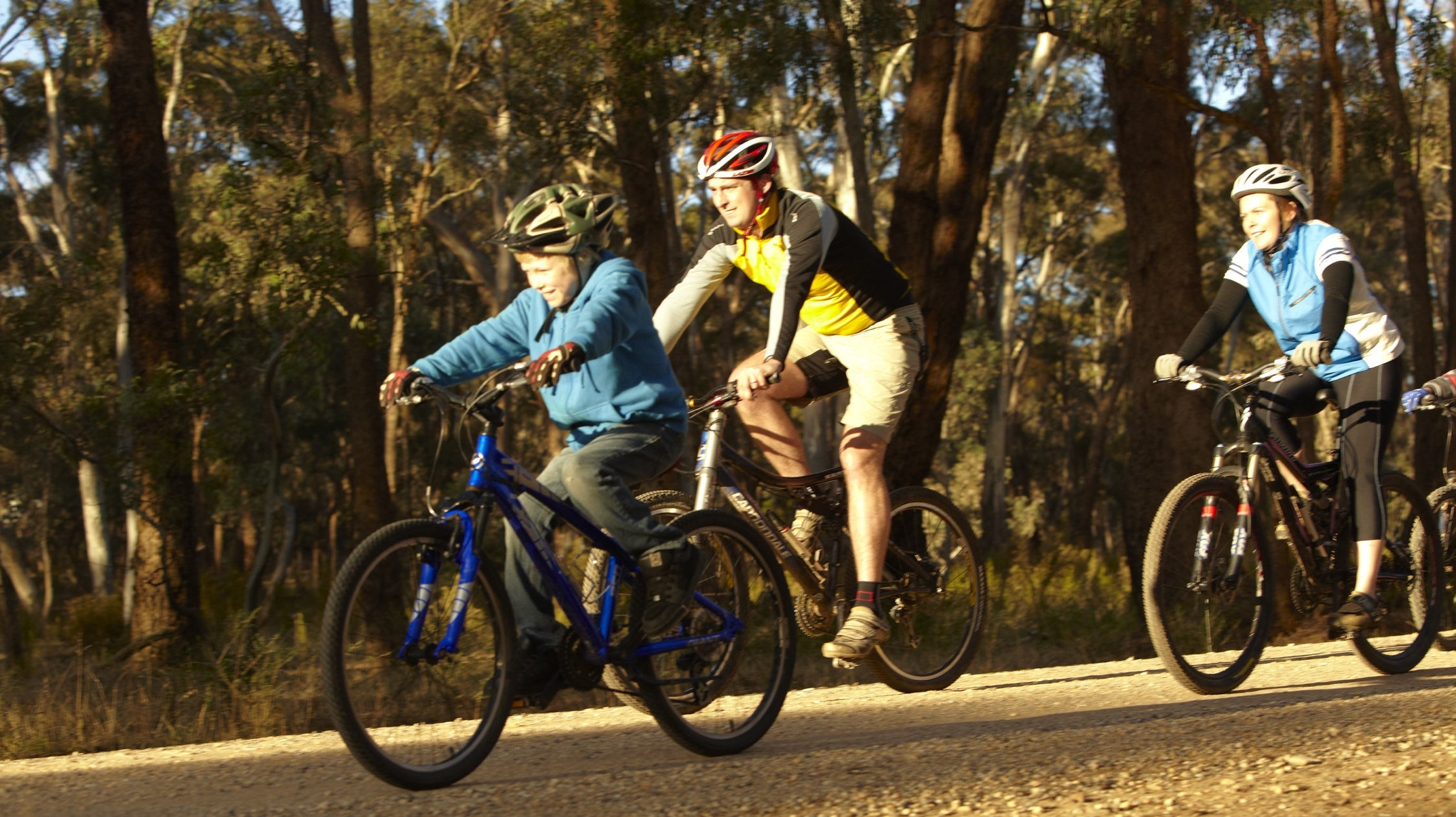 People cycling through Castlemaine Diggings National Heritage Park