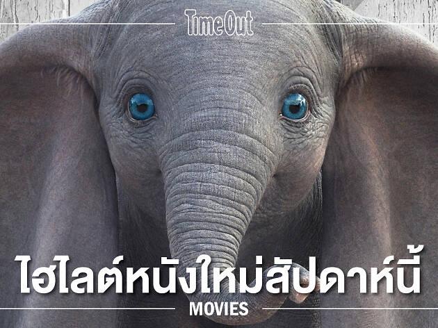 """ช้างน้อยดัมโบ้: 8 ทศวรรษของการผจญภัยสร้างแรงบันดาลใจให้ทุกคนยอมรับ """"ความต่าง"""""""