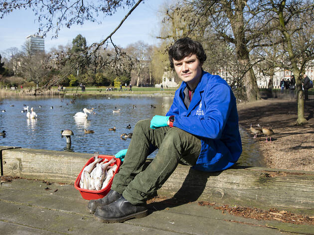 Hugh Smith, chief wildlife officer for Royal Parks