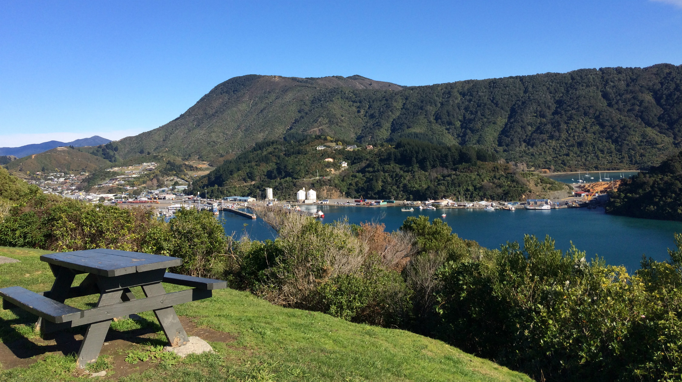 View of the Marlborough Sounds from a nearby hill