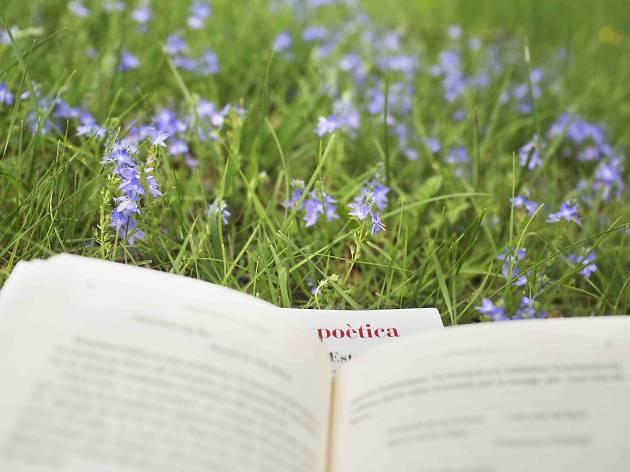 Poesia als Parcs. Sant LLorenç del Munt. Xarxa de Parcs Naturals de la DiBa © Oriol Clavera
