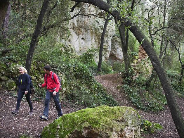 Parc del Foix