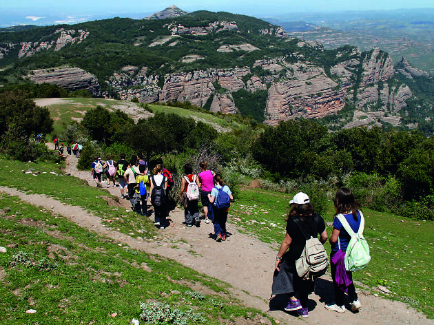 Camí a Sant Llorenç del Munt desde el Coll de Estenalles. Parc Natural de Sant Llorenç del Munt i de l'Obac