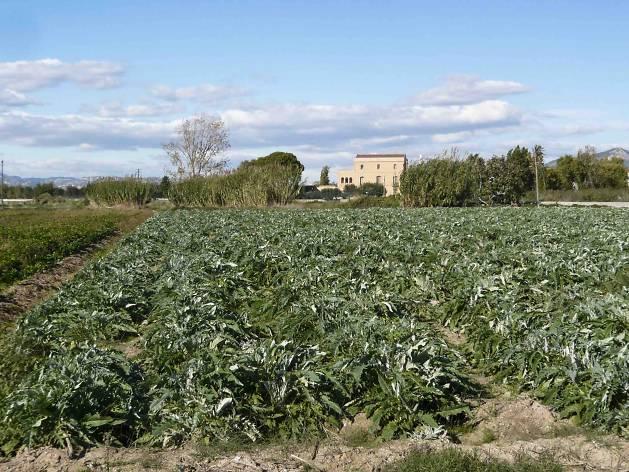 Espai agrícola del Baix Llobregat