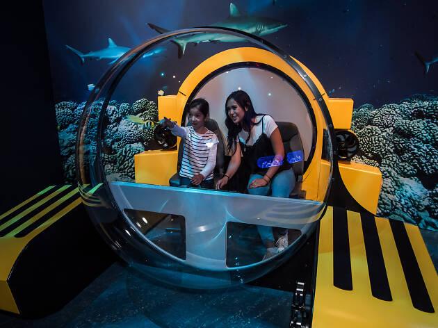 Triton Submersible Photo-Op Station