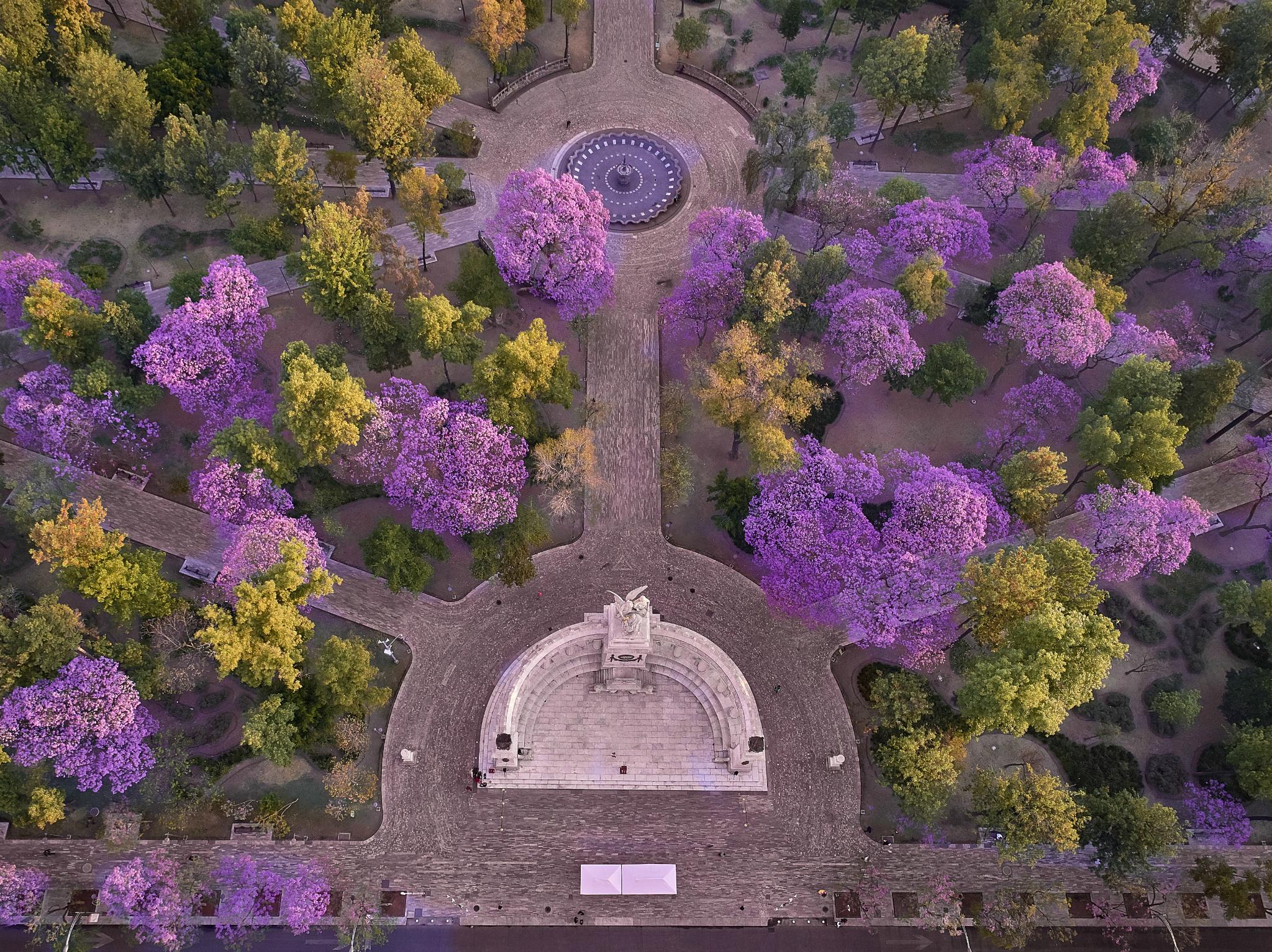 15 lugares de la CDMX para visitar en primavera