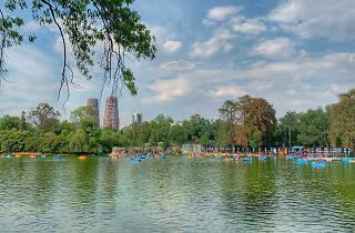 El lago mayor del Bosque de Chapultepec en la CDMX