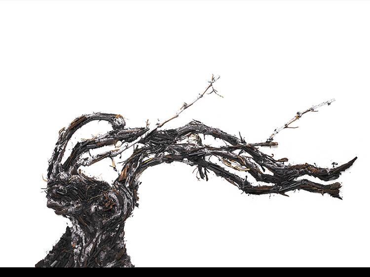 Vik Muniz, Shared Roots