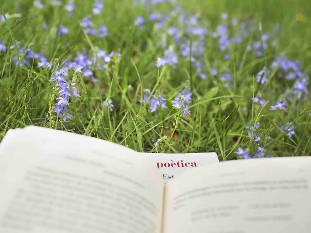 Poesía en los Parques