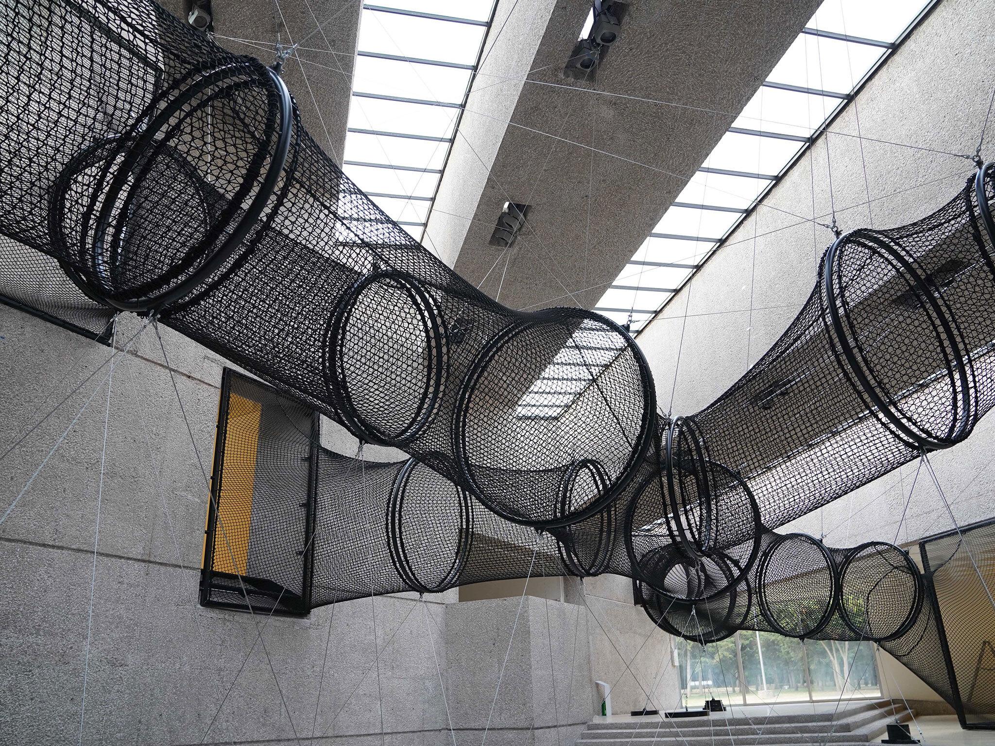 Lo que debes saber de Carsten Höller en el Museo Tamayo