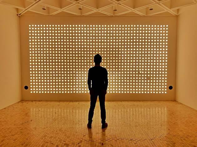 Exposición de Carsten Höller sunday en el Museo Tamayo