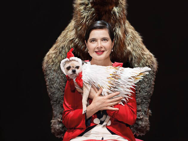 Isabella Rossellini in Link Link Circus