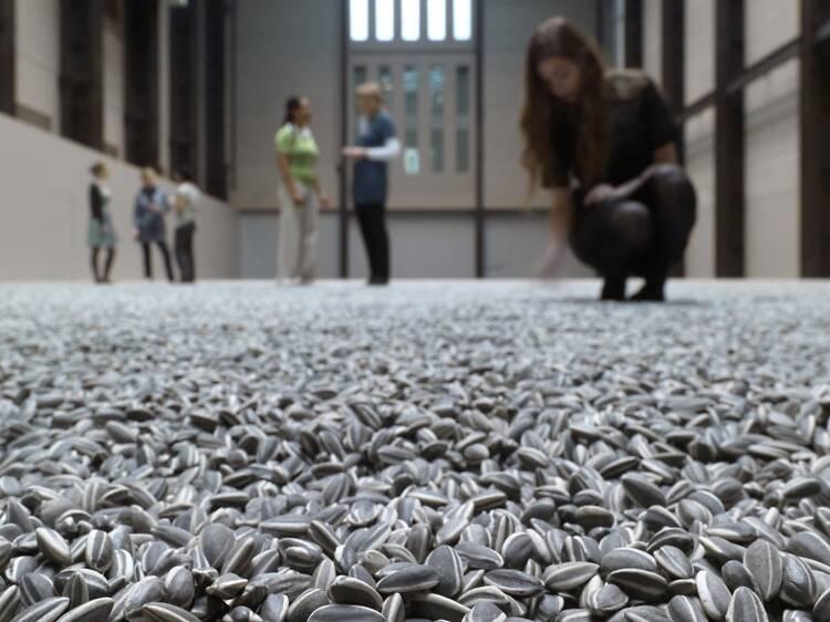 Sunflower seeds (2010)