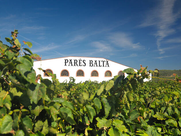 Celler Parés Baltà