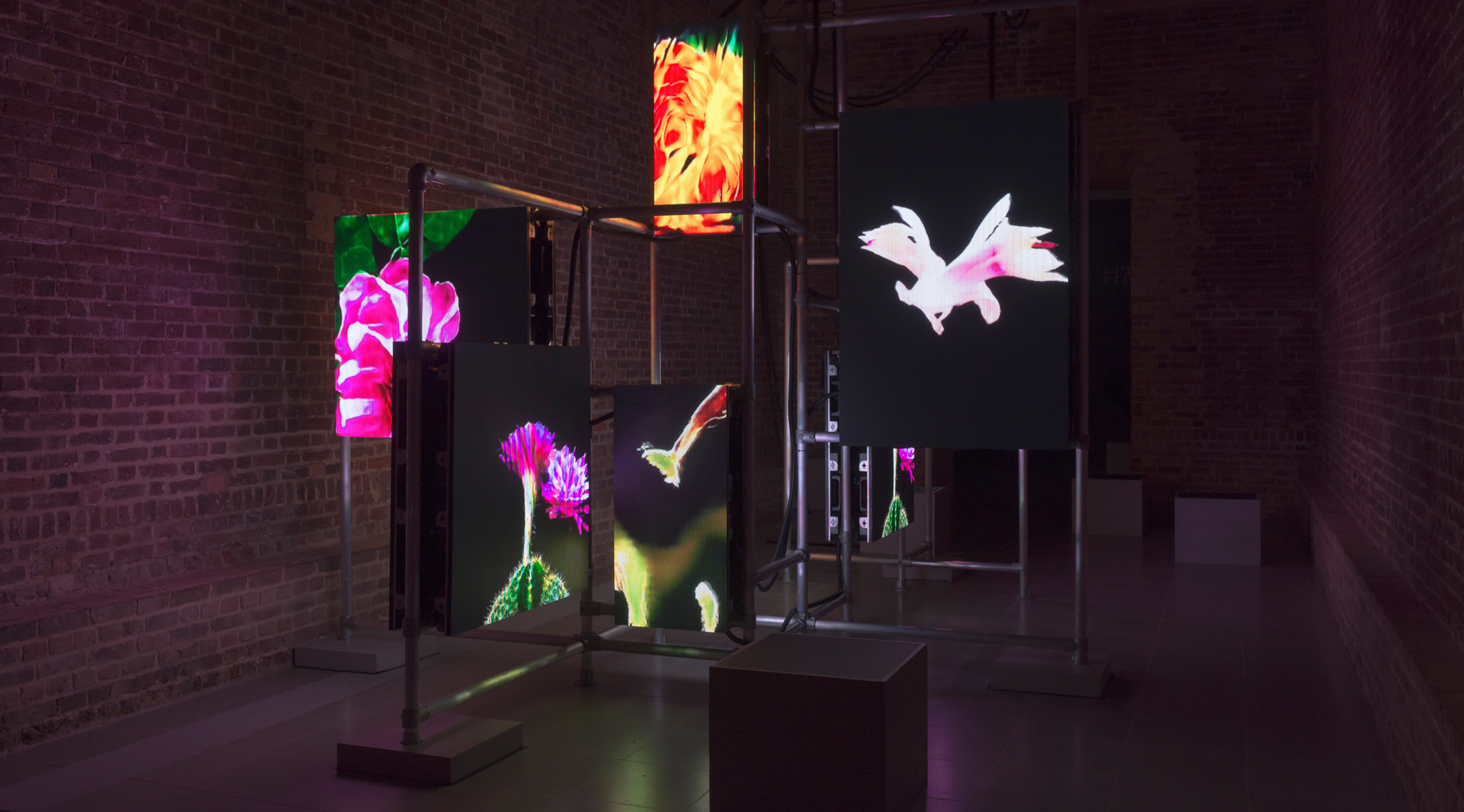 Exhibition of the week: Hito Steyerl: 'Power Plants'