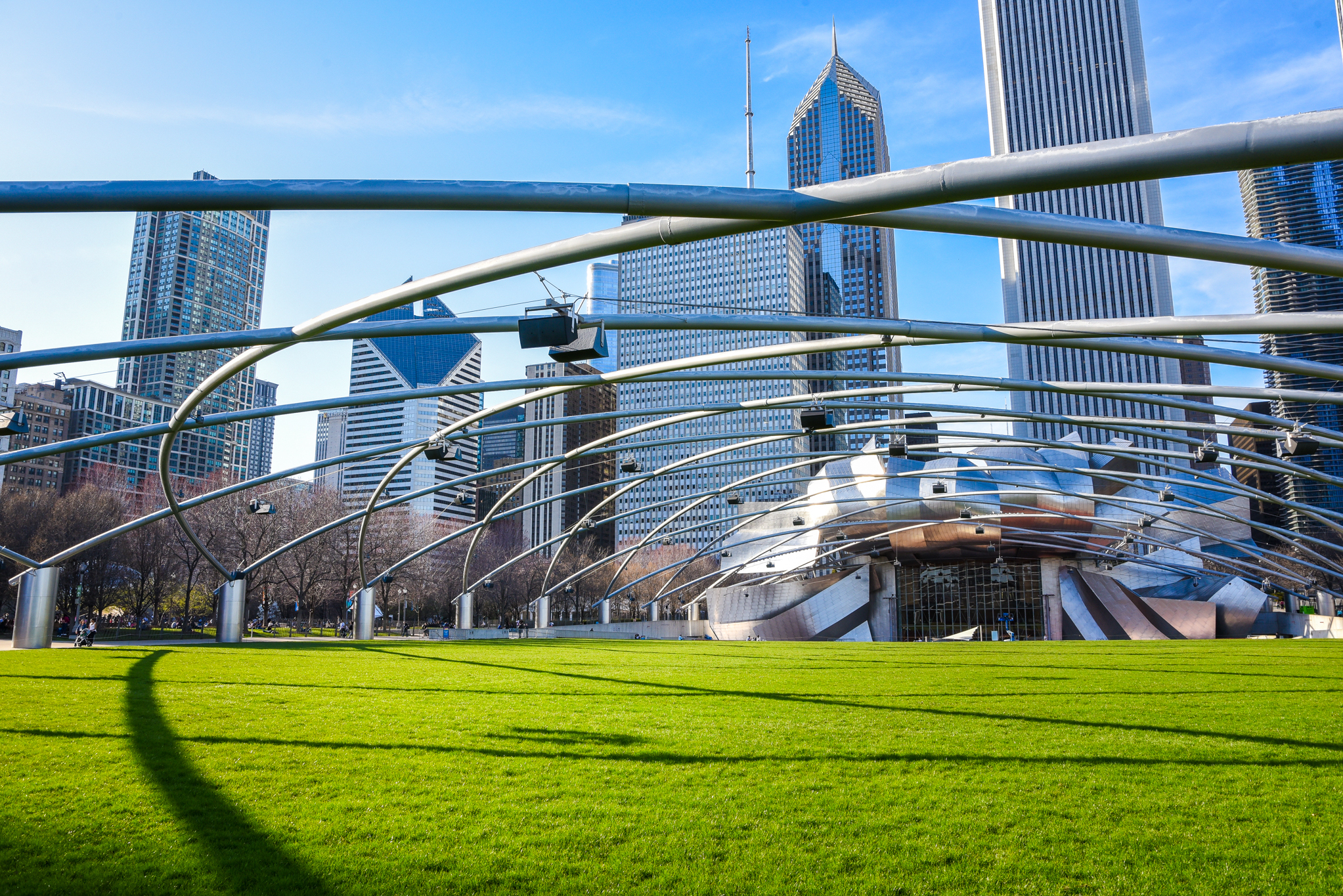 Millennium Park's Great Lawn reopens with social distancing circles