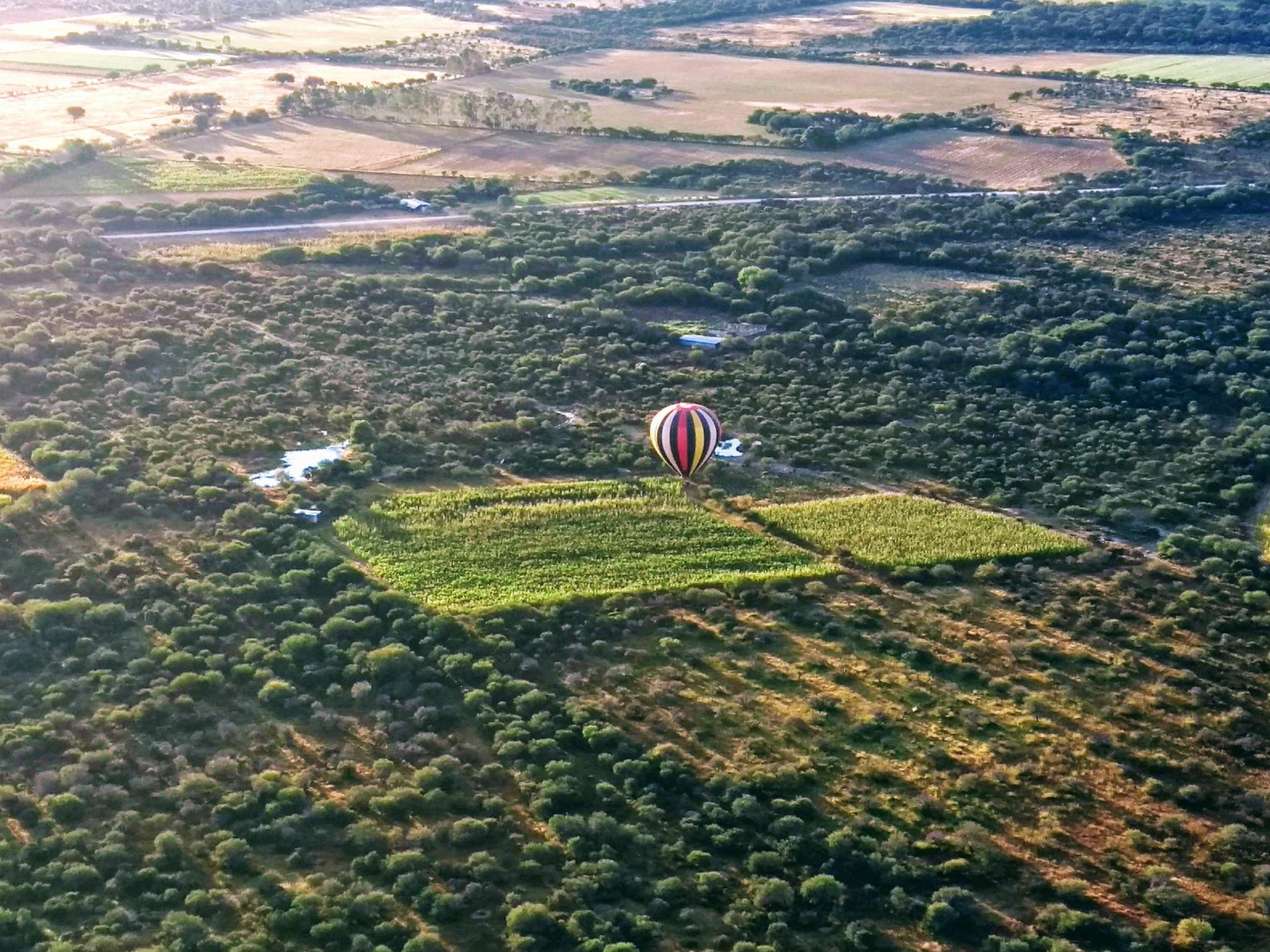 Vuelo en globo en Jerez, Zacatecas
