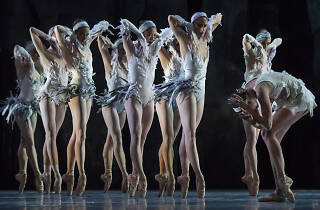 Lac Australian Ballet 2019 supplied
