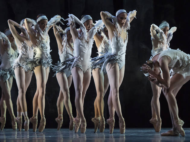 Swan Lake is transforming again in this dark and sexy new production