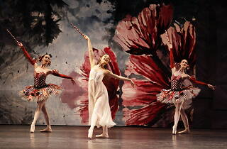 The Nutcracker on stage