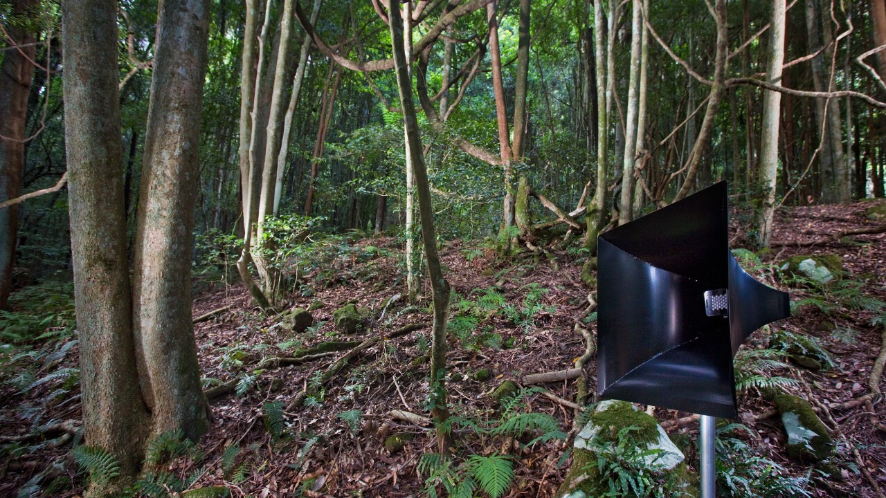 Mitchell Thomas & Bronwen Williams, 'The Odds of Egress' Sculpture at Scenic World