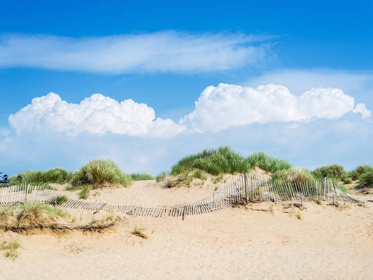 Formby Beach, Merseyside