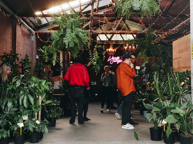 Wandering Jungle x the Espy plant sale
