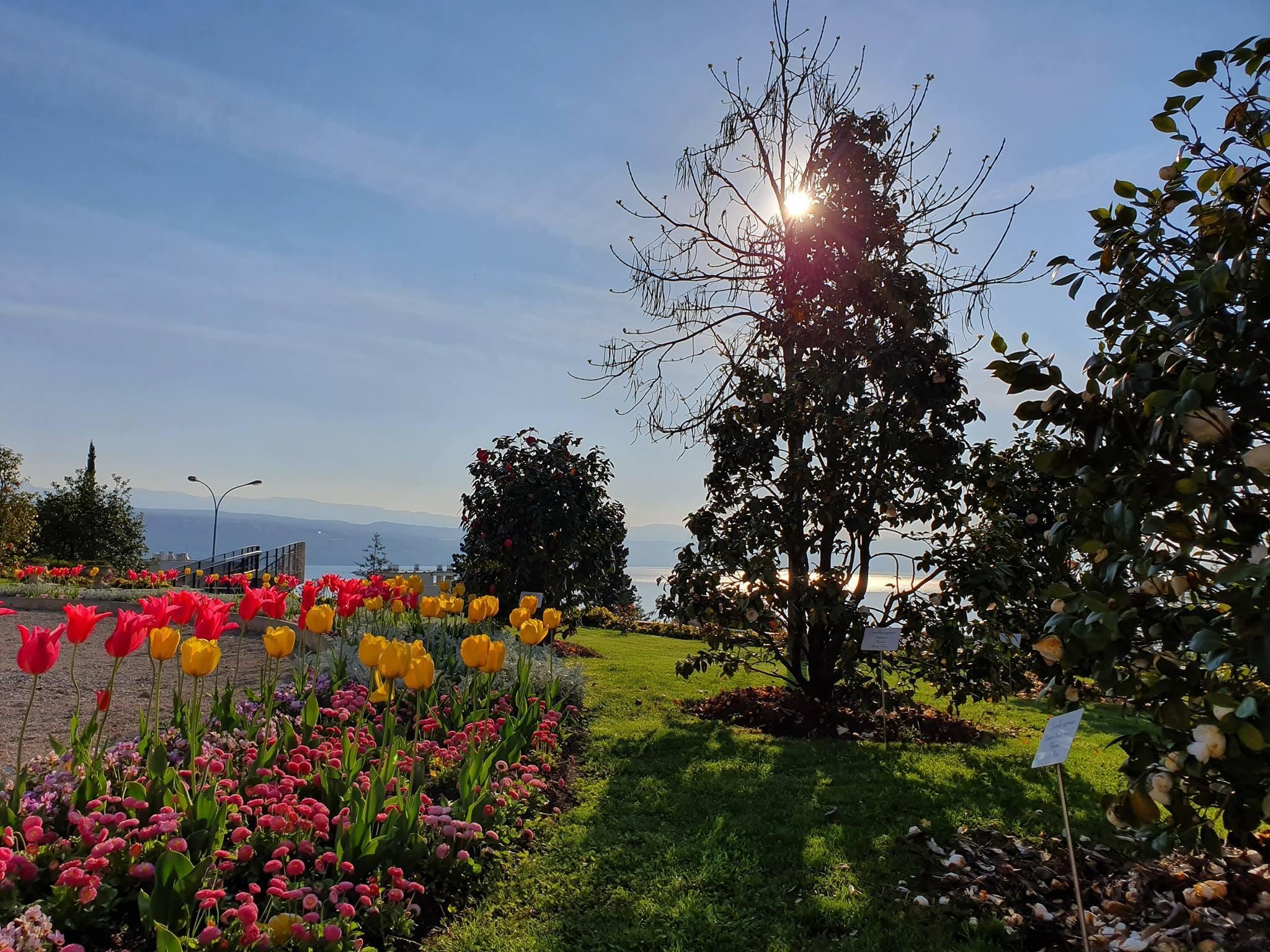 Opatija's American Gardens reopened