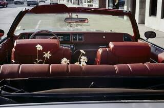 Vivian Maier. Chicago, June 1978