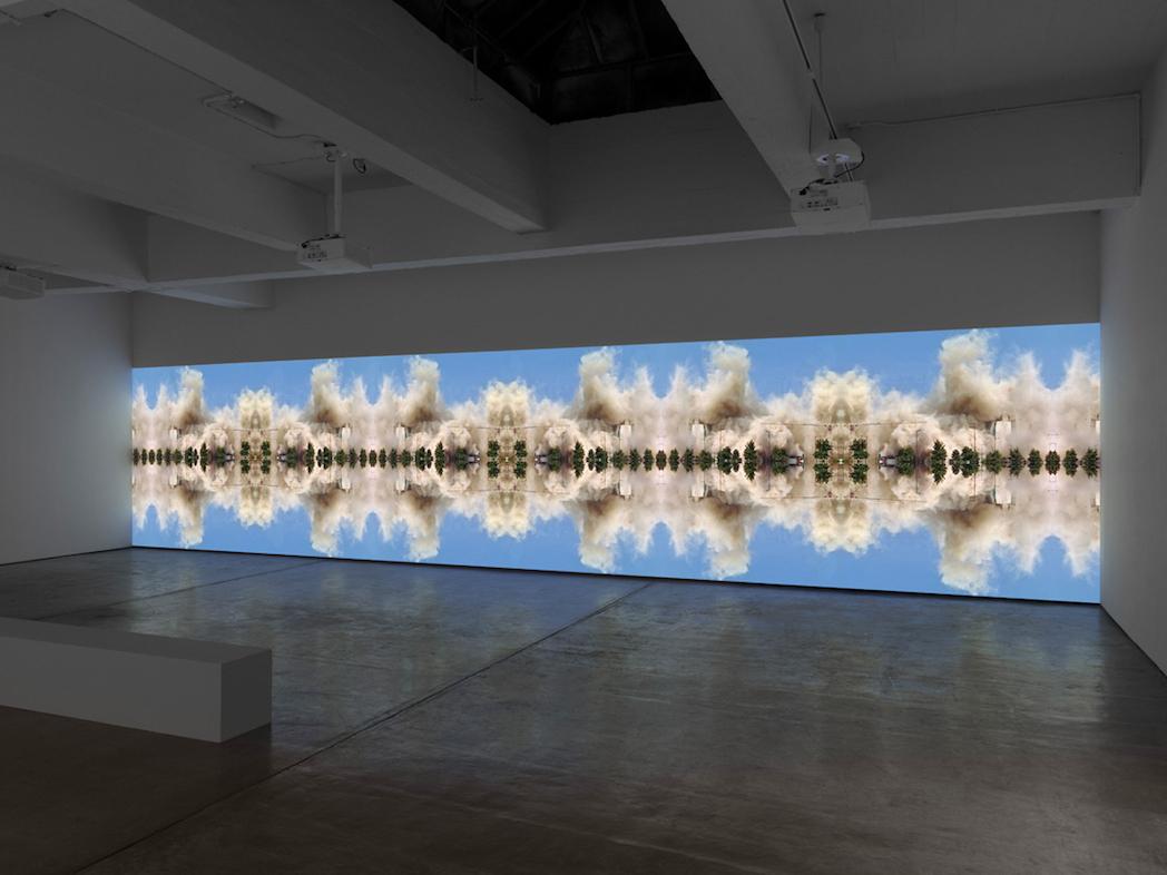 Walid Raad, Installation view