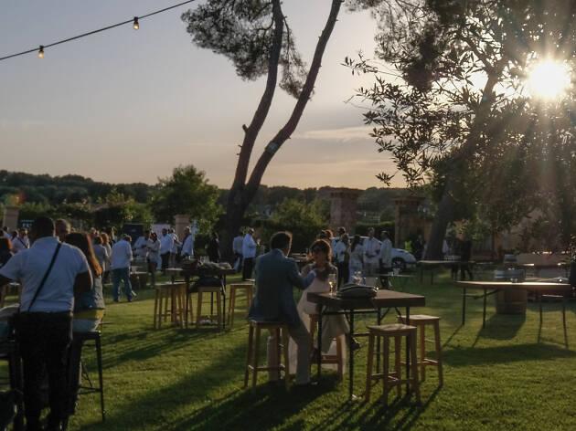 Vineyard Flowering Party