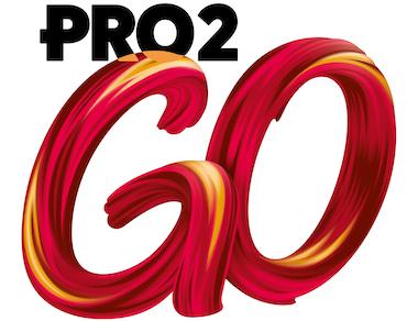 Pro2Go logo3