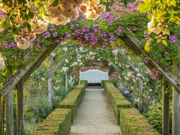 The Rose Garden in June at Mottisfont, Hampshire.