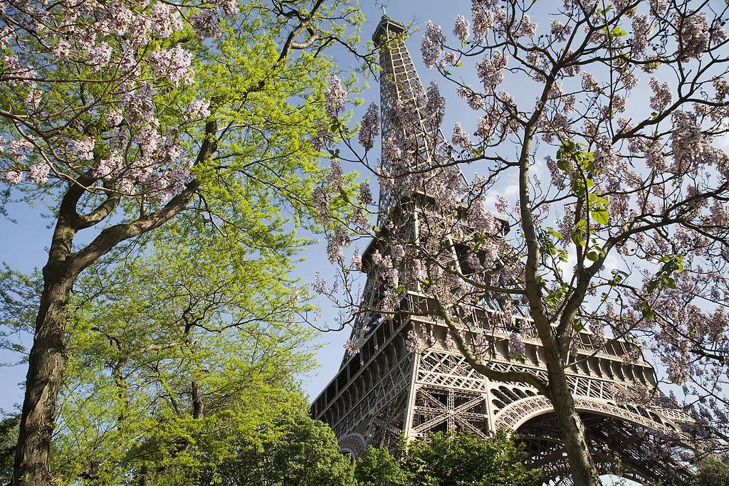 1. Admira la ciudad desde el tercer piso de la Torre Eiffel