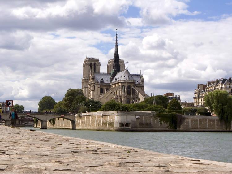 Saluda les gàrgoles de la Cathédrale Notre-Dame de Paris