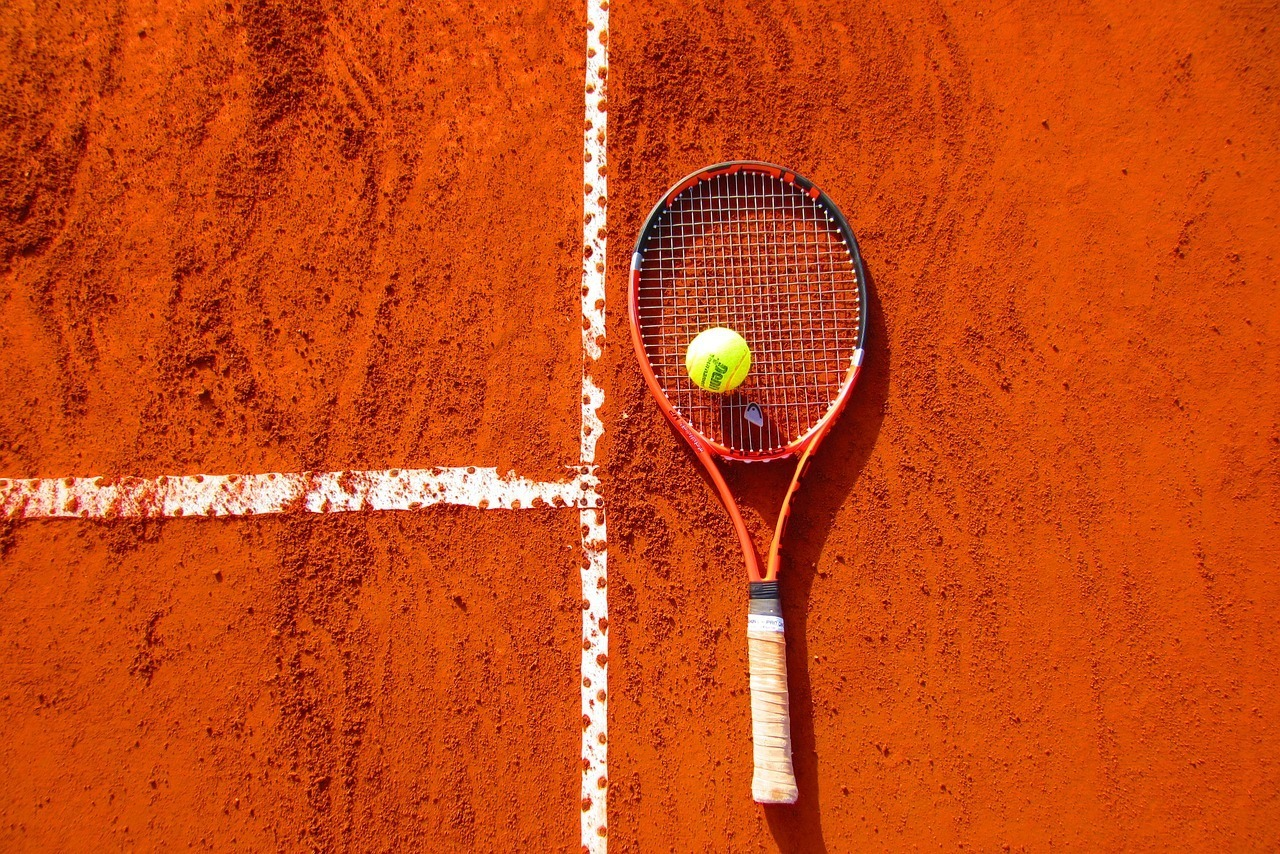 18. Mira la final de Roland Garros
