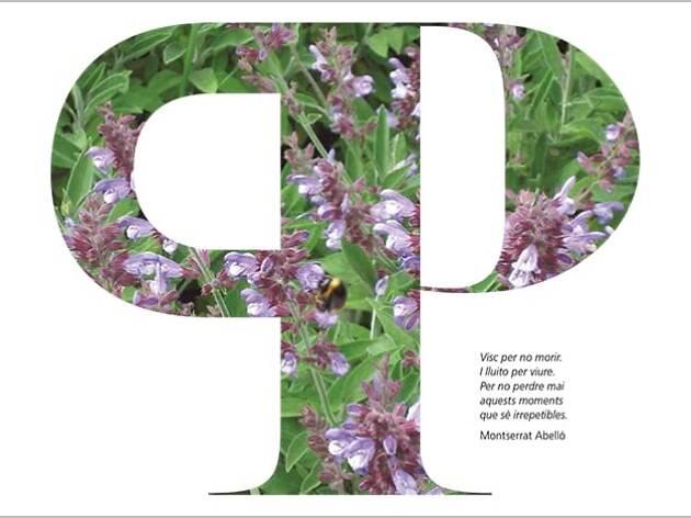 Poesia als parcs. Lletres i paisatges