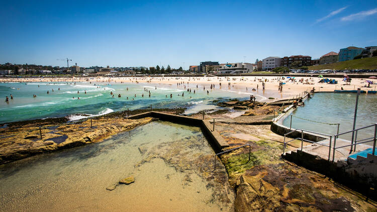 Crowds in the water at Bondi Beach