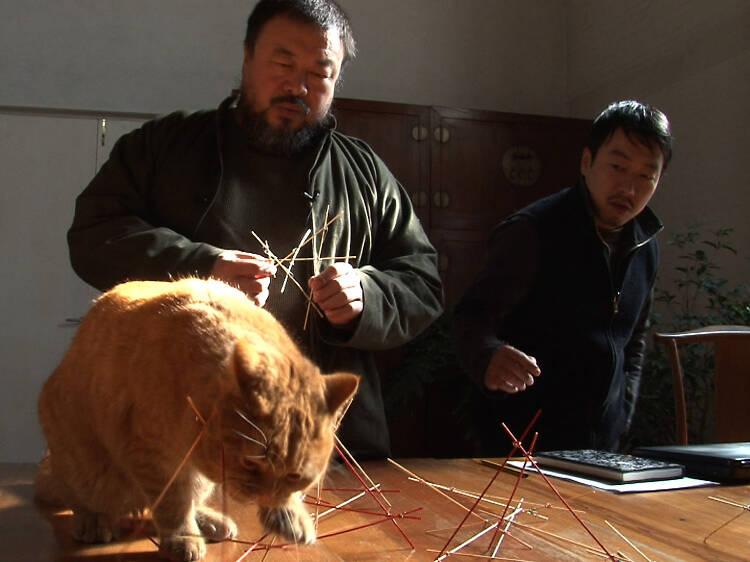 Ai Weiwei: nunca se arrepiente